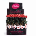 Red Milk Chocolate Sweetheart Roses - 48CT Box