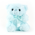 Baby Blue Teddy Bear