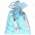 Baby Blue Mesh Favor Bags - 12CT Bag