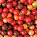 Autumn Mix Sixlets