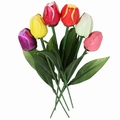 Assorted Milk Chocolate Long Stem Tulips - 6-Pack