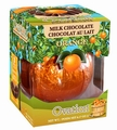 Milk Chocolate Orange Break-A-Part Ball