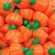 Mellocreme Pumpkin.jpg