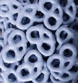 Blue Yogurt Covered Pretzels - Blueberry