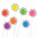 Two-Tone Sunflower Twinkle Pop - 24-Pack