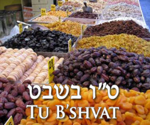 All About Tu B'Shvat