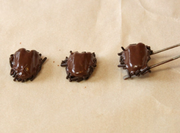 chocolate-cockroaches-recipe-5.jpg