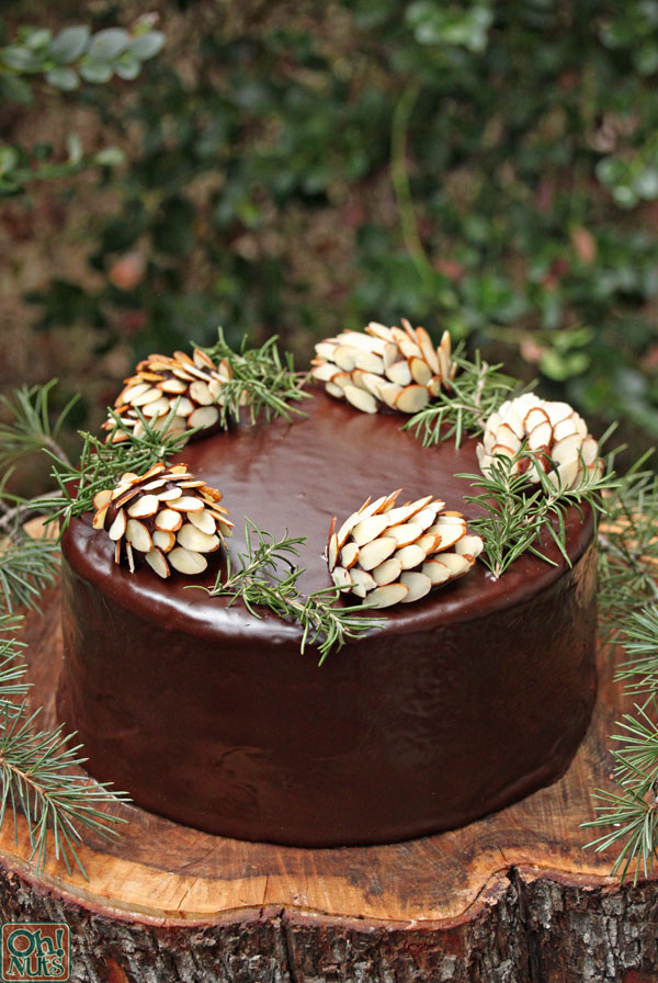 How To Make Chocolate Pine Cones Oh Nuts Blog