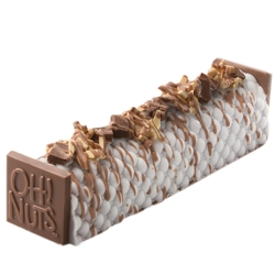 Passover Large Decorative Praline Log