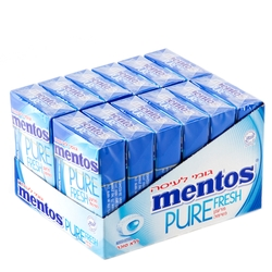 Mentos Sugar Free Pure Fresh Gum - Mint - 12CT