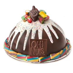 Hand Made Dome Hanukkah Belgian Chocolate & Candies SMASH CAKE