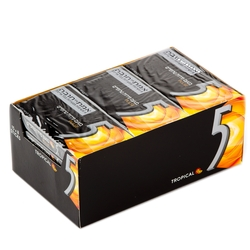 5 Tropical Fruits Pulse Gum Sticks - 15CT Box