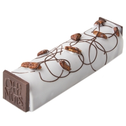 Passover Large Decorated Chocolate Log