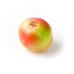 Apple Marzipan