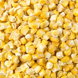 Freeze Dried Sweet Corn - 2oz Bag