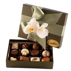 Premium Belgium Truffles Green Box - 12 PC Box