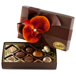 Premium Belgium Truffles Closed Brown Box - 8 PC Box
