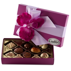 Premium Belgium Truffles Closed Purple Box - 8 PC Box