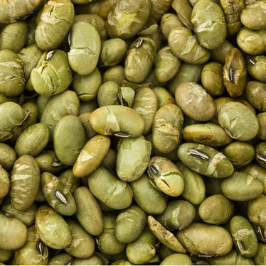 Dry Roasted Salted Edamame (Green Soybeans)