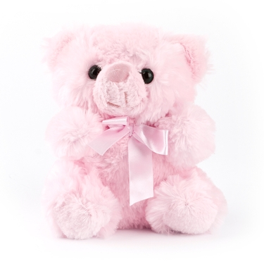Baby Pink Teddy Bear