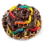Chocolate Pretzel Pie With Gummy Snakes