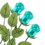 Non-Dairy Teal Chocolate Roses - 12 Pack