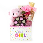 Baby Girl Teddy Bear Chocolate Basket