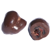 Non-Dairy Chocolate Covered Cranberries