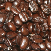 Hazelnut Coffee Beans - 8 oz