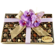 Premium Belgium Truffles Clear Box - 60 PC Box