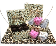 New Baby Leopard Gift Box Arrangement