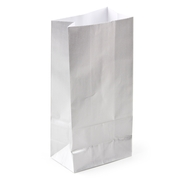 Silver Paper Treat Bags - 12CT