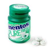 Mentos Pure Fresh Sugar Free Gum - Spearmint