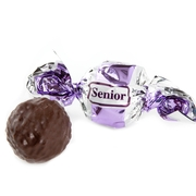 Purple & Silver Dark Chocolate Praline with Chocolate Filling - 2.2 LB