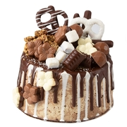 Gourmet Belgian Chocolate Covered Halva Cake - Chocolate Truffles