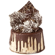 Gourmet Belgian Chocolate Covered Halva Cake - Chocolate Bark