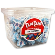 Blue Raspberry Dum Dum Pops - 1LB Tub