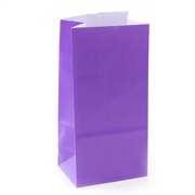 Purple Paper Treat Bags - 12CT