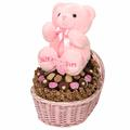 Baby Girl Bassinet Parve Chocolate Gift Basket