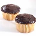 Passover Cup Cakes - 6CT Box