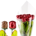 Red Milk Chocolate Long Stem Roses - Bouquet of 12