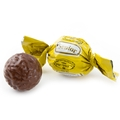 Senior Yellow Milk Chocolate Praline with Hazelnut and Milk Cream & Cereal Filling - 2.2 LB