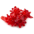 Dried Hibiscus Flower - Light