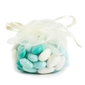 Ivory Organza  Pouches - 12CT Bag