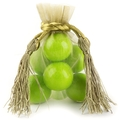 Moss Green Mesh Favor Bags With Tassels - 12CT