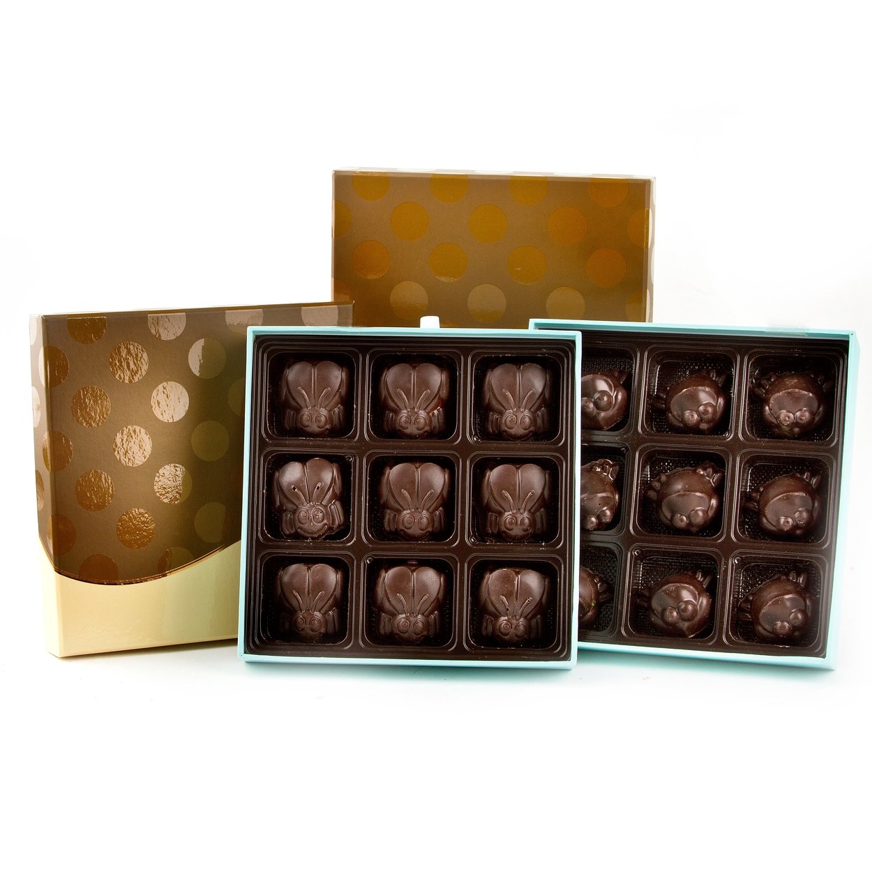 Chocolate Plagues of Frogs & Locusts Gift Box Set • Passover ...