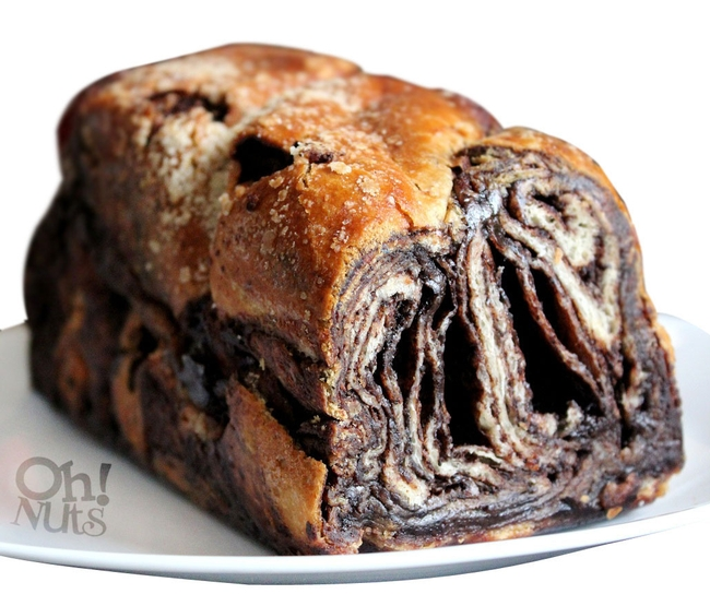 No Knead Chocolate Babka Recipe — Dishmaps