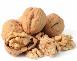 Passover Walnuts in Shell