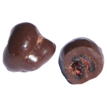 Passover Chocolate Covered Cranberries