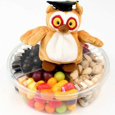 Owl 4-Section Graduation Gift Tray